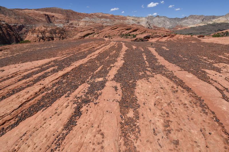 Moki Balls along the Petrified Dunes Trail