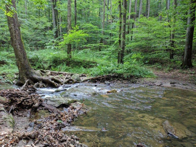 Overshot Run stream crossing