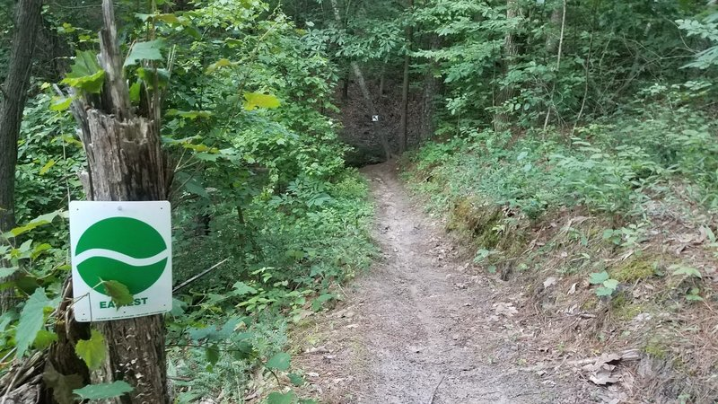 Steep drop into a culvert, the easiest of two options