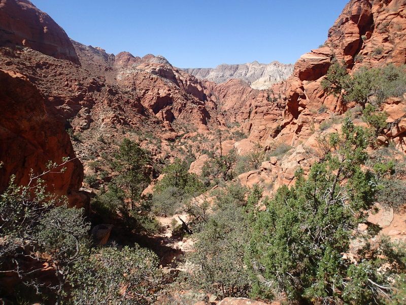 View from the saddle of Padre Canyon