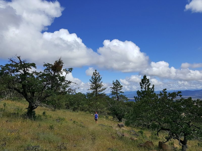 On the Lithic Trail on the east side of Roxy Ann