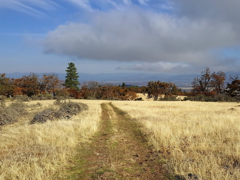 Going north on the Equestrian Loop Trail