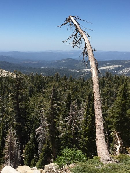 Looking back over the Wrights Lake area, west from the trail from Hemlock Lake to Smith Lake.