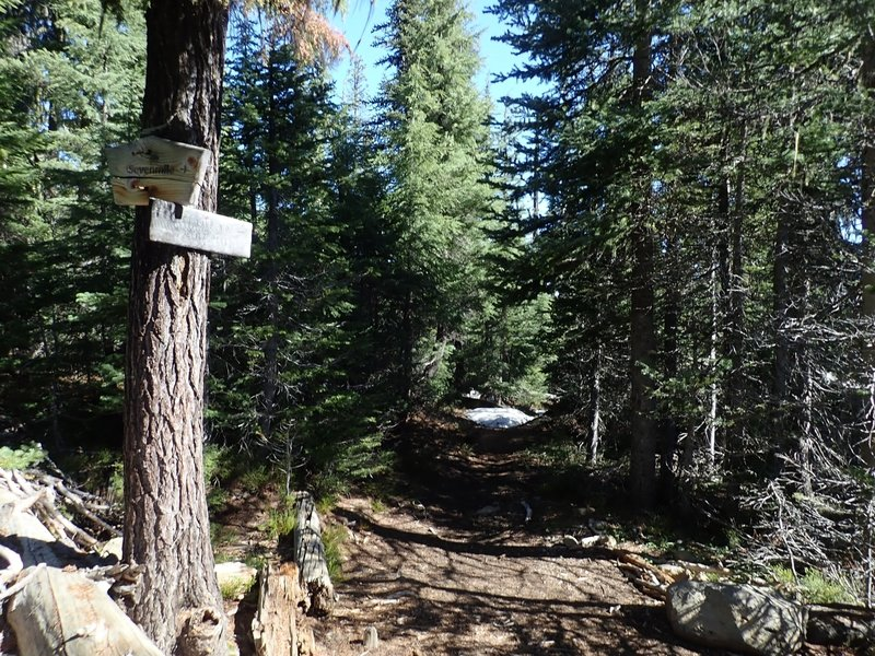 The PCT/Sevenmile Marsh Trail junction; the trail to Ranger Spring is just north of here.