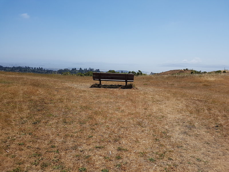 Best views of San Francisco, Berkeley, Marin, Golden Gate and Bay Bridge from this bench