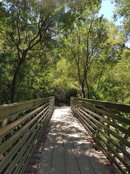 Beautiful trail along the creek