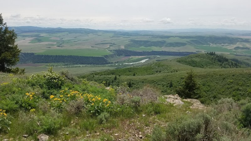 Looking at the Snake River from the top of Kelly Mountain