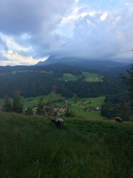 View of Mt. Pilatus from Kriens Green running trail