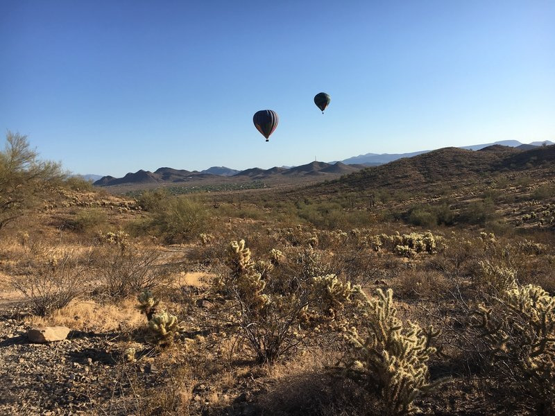Hot Air Balloons over the Dixie Mountain Loop trail