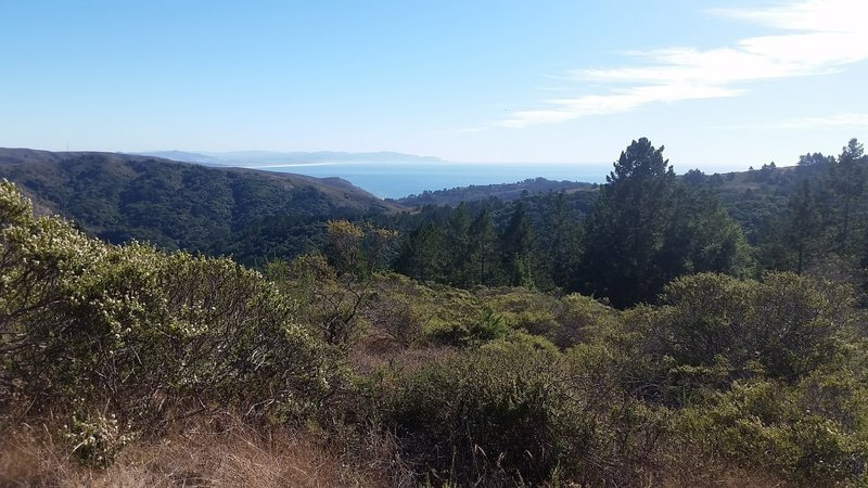 View of ocean from trail