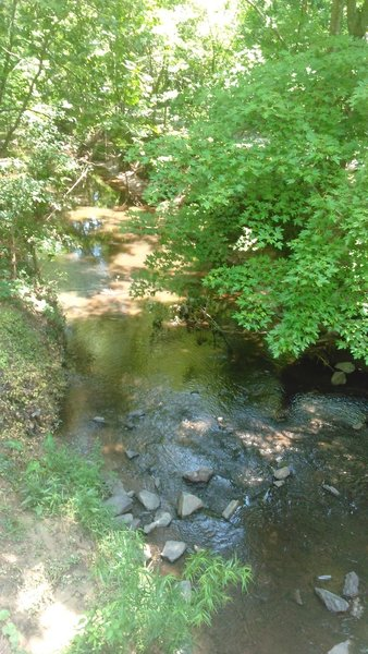 Ellerbee Creek