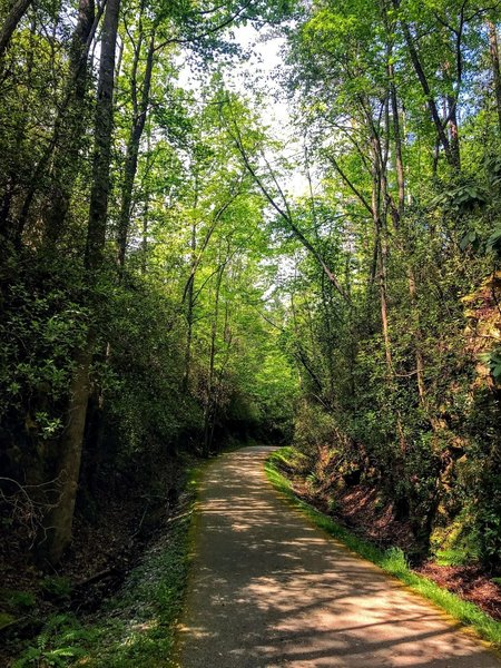 Old railroad line turned to trail