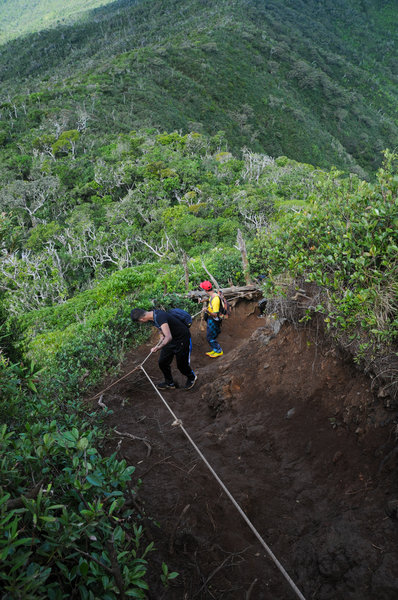 Hikers use the ropes to help them descend the steep summit approach.