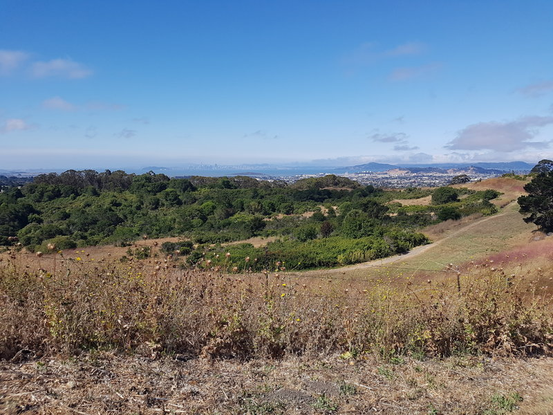 Views of Richmond