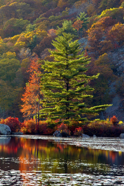 Beautiful colors in Harriman State Park