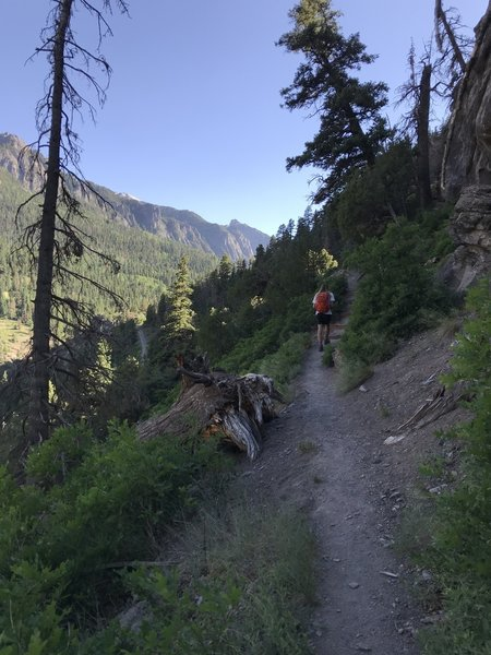 Old Twin Peaks Trail - Looking down the Valley over Ouray