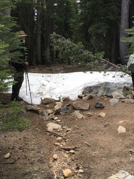 A small amount of snow still on the trail