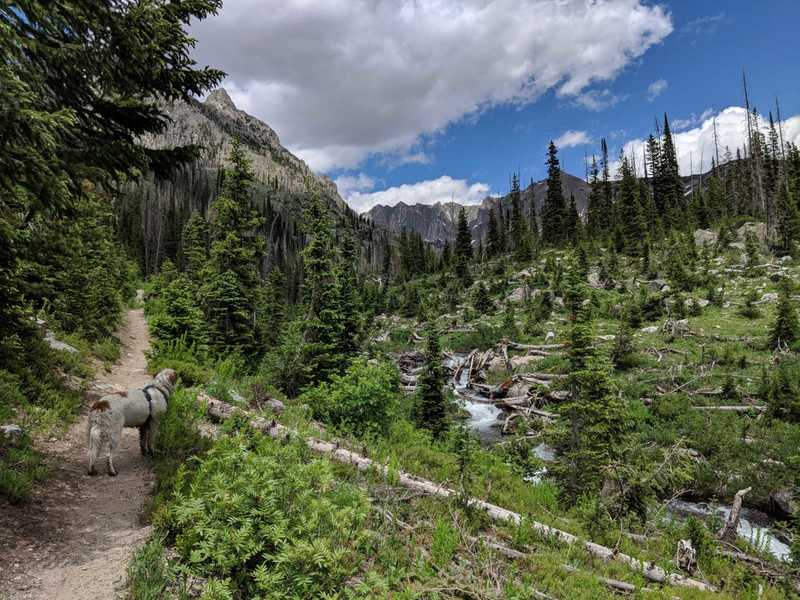 Heading up to Gilpin Lake, late June.