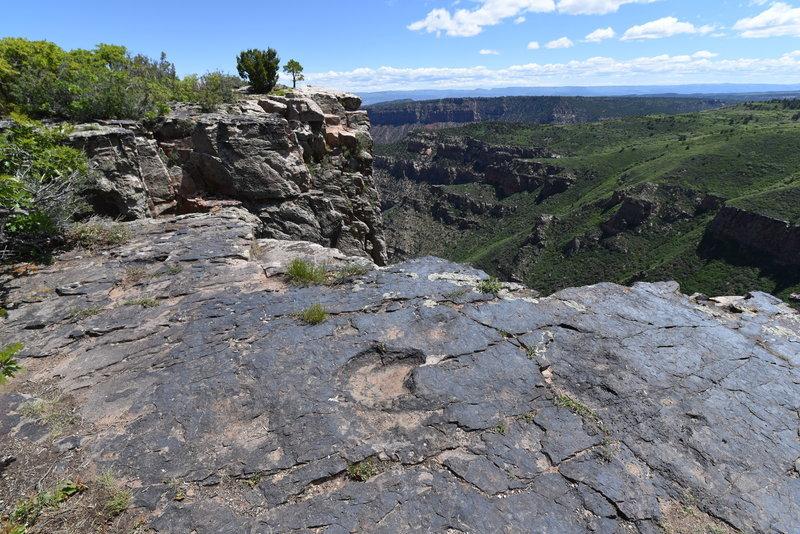 Dinosaur track near cliff edge