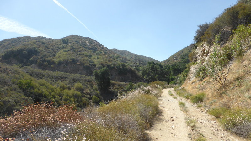 Elsmere Canyon Open Space.