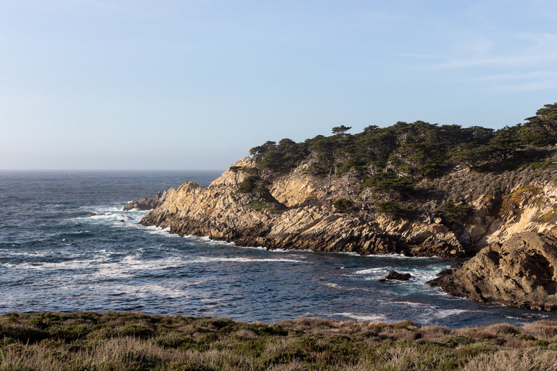 Headland Cove from Sea Lion Point Trail