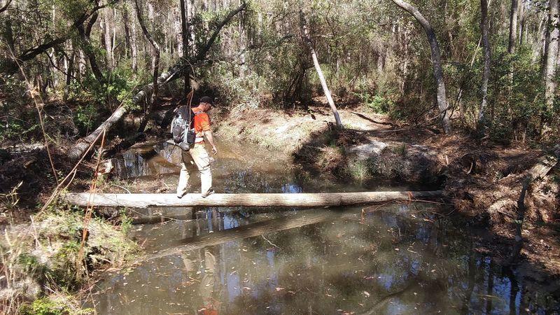 Crossing the creek on an improvised bridge