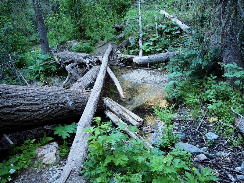 One of the several crossings of the creek