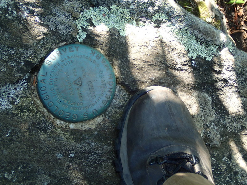 Cold Mountain, NC U.S. Geological Survey Bench Mark