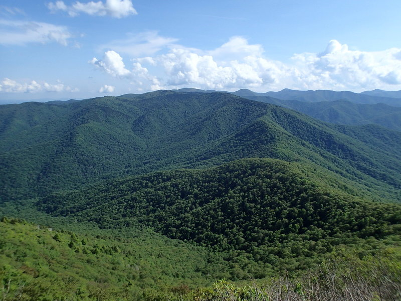 Cold Mountain, NC (6,030 ft)