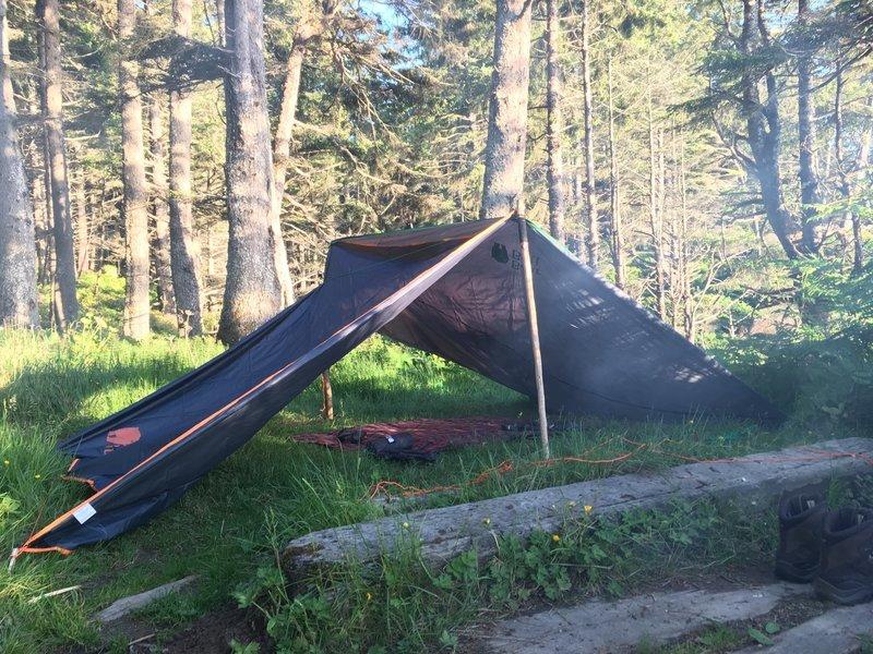 Camping at Seafield.