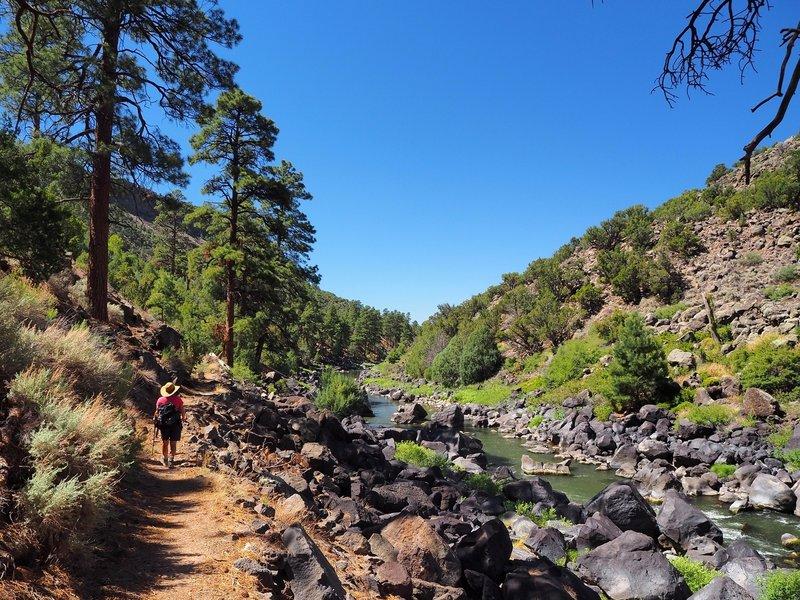 Along the River Trail near Little Arsenic Springs