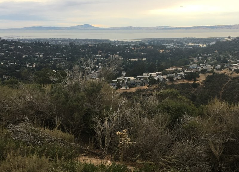 View from top of trail across SF Bay
