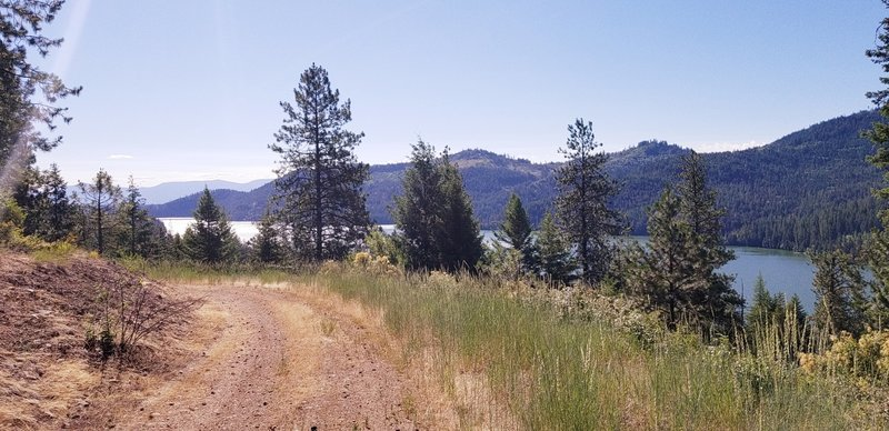 Tthe north logging road, the last section of the trail overlooking Spirit Lake.