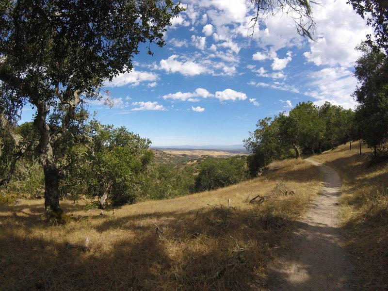 Heading down Gilson Gap trail from Ollason Trail