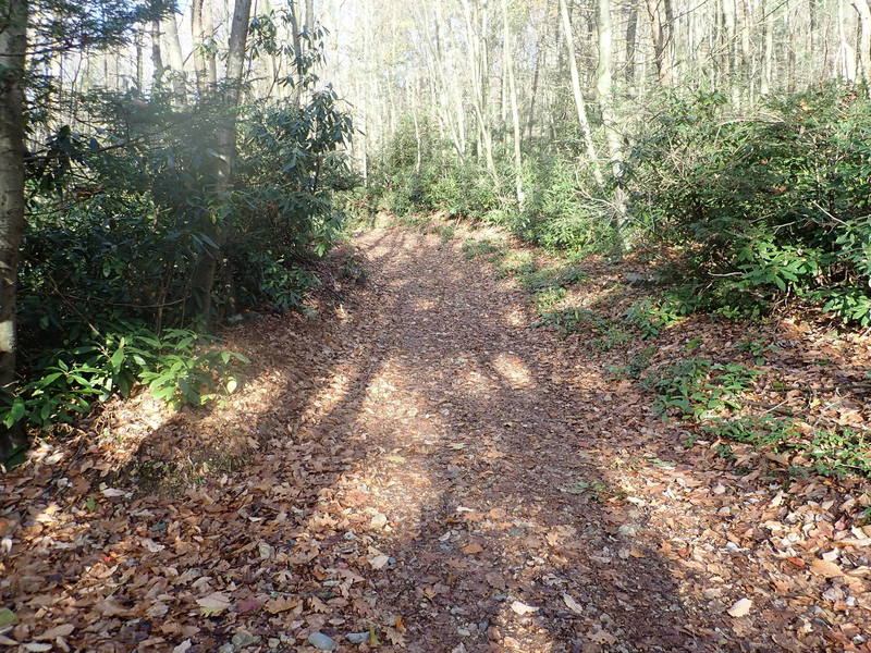 Furnace Creek Trail