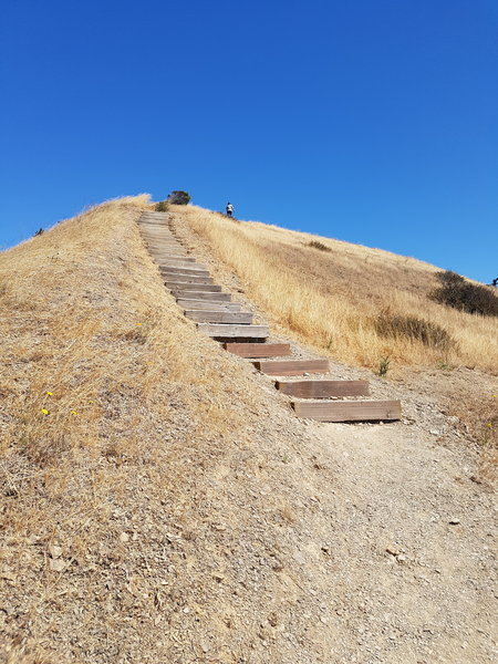 Trail up to East Vista Point