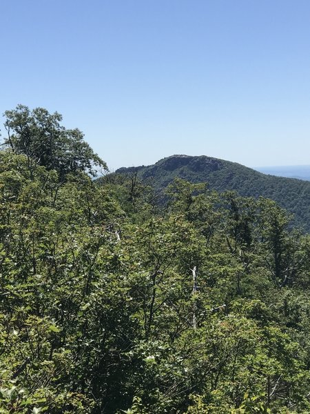 View of Old Rag from the summit of Robertson Mountain.