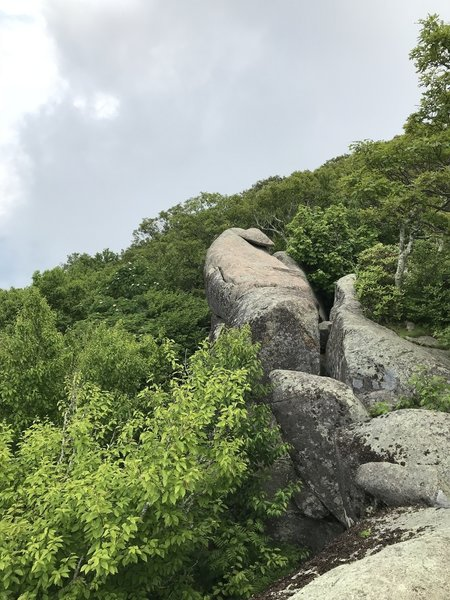 Rock outcropping near summit of Priest