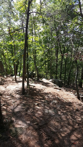 Heading down the Rocktop Trail from the sumit!