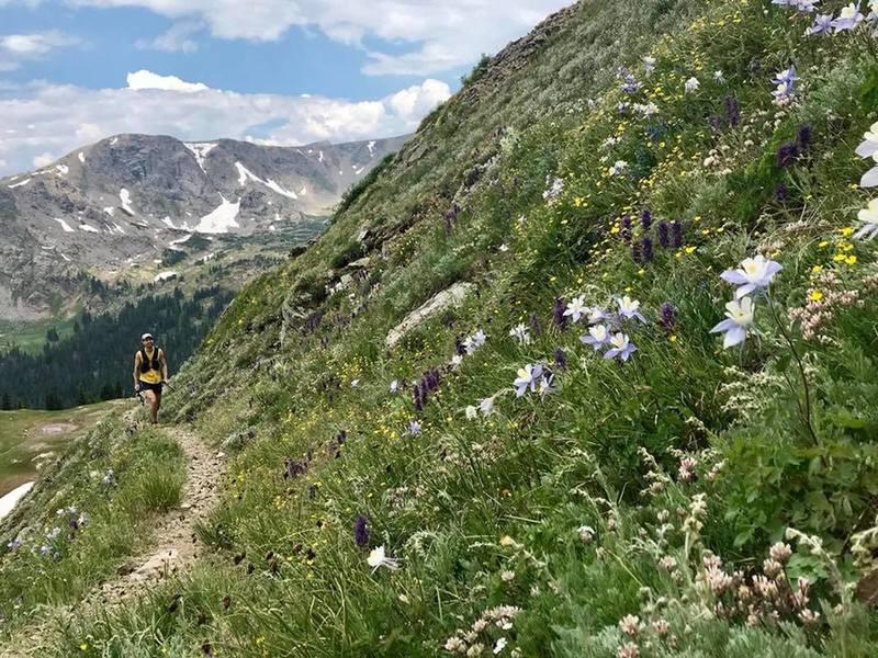 Climbing Buchanan Pass on the west side.