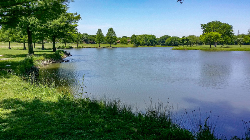 A great spot to fish, picnic, or just enjoy nature.