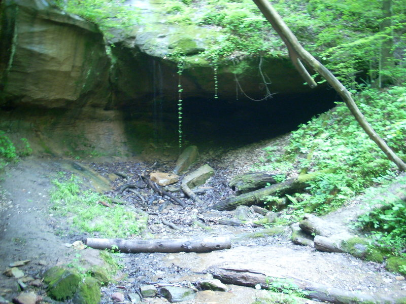 Cave on Archers Fork