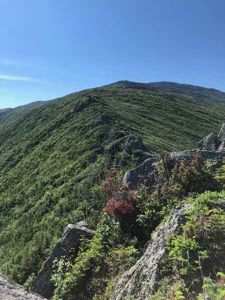 Looking up the ridge from the Castles and the summit.