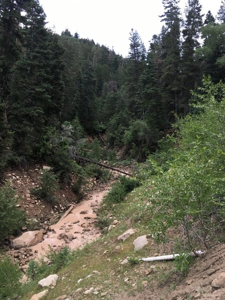 Canal Creek from the trail