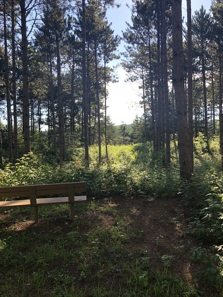 One of the many benches located on trail with a view.