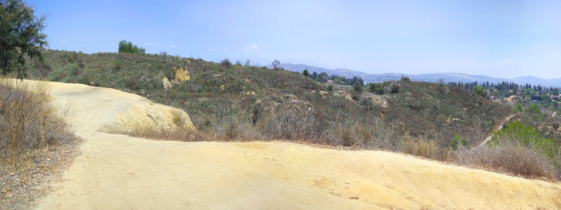 Hilltop on Castlewood Trail, looking north toward the San Gabriels.