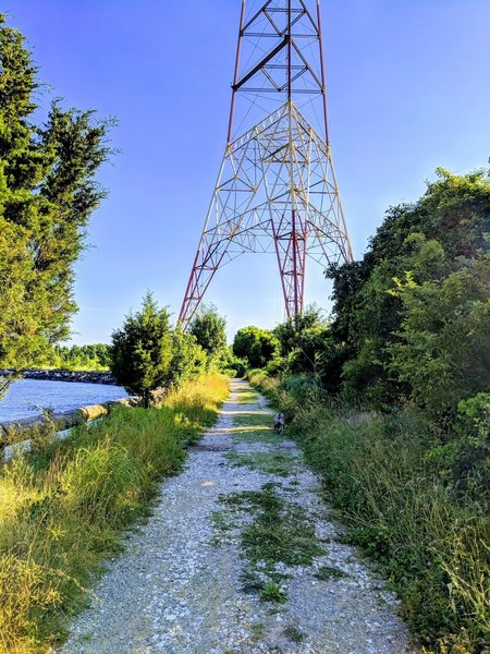 Chesapeake Bay side of trail radio tower