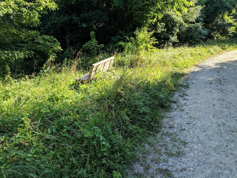 """""""Scenic"""" sections of the trail have been reclaimed by nature"""