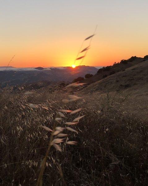 Sun set on ridge