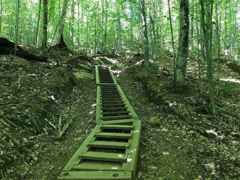 Steps on Mt Arab Trail